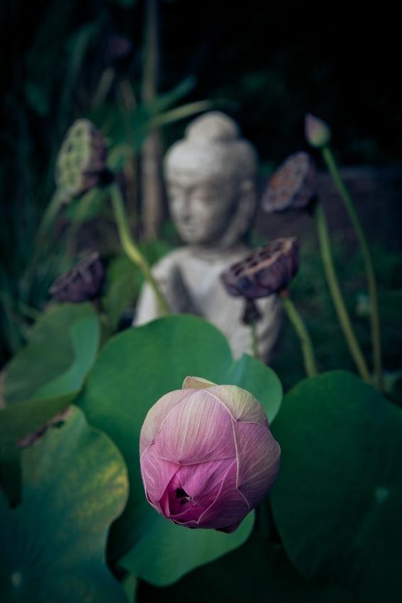 que es la meditacion los tipos y sus beneficios 6