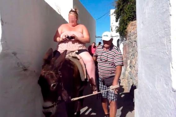 grecia prohibe viajes en burro a turistas con sobrepeso 3