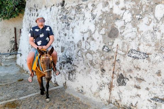 grecia prohibe viajes en burro a turistas con sobrepeso 5