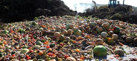 desperdicio de alimentos cuesta a mexico 25 mil millones de pesos por ano 2