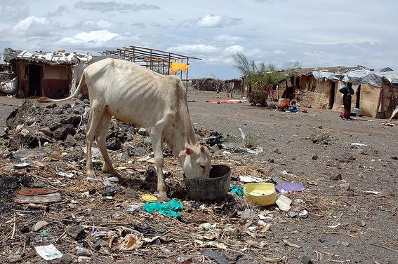 el hambre alcanza niveles preocupantes en 60 paises 3