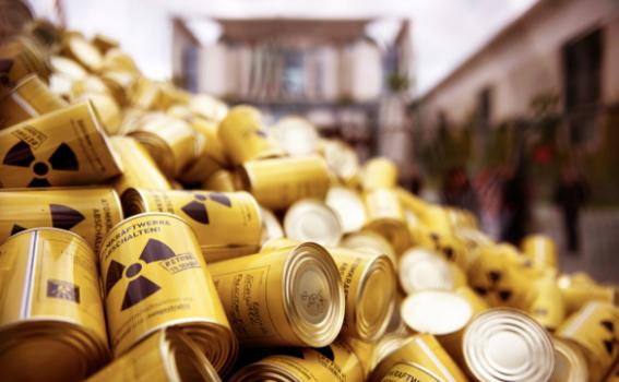 cuales son los alimentos mas radiactivos 2