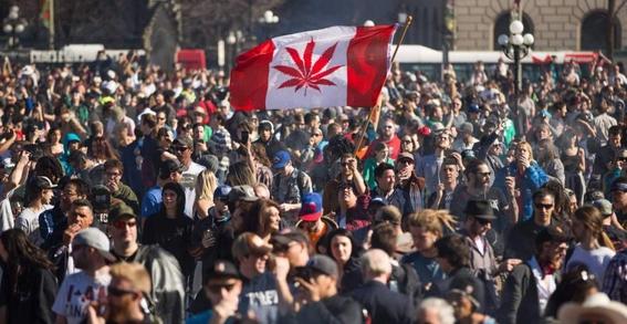 canada legaliza la marihuana tras un siglo de prohibicion 1