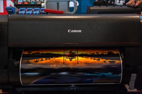 que es el festival canon zoom in project 4