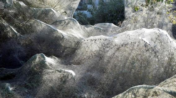 un lago recubierto por una gigantesca telarana en grecia 3
