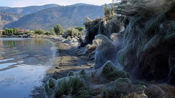 un lago recubierto por una gigantesca telarana en grecia 1