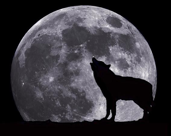mitos sobre la influencia de la luna 2