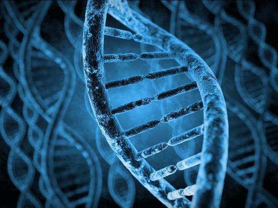 estudios determinan si existe un gen criminal 2