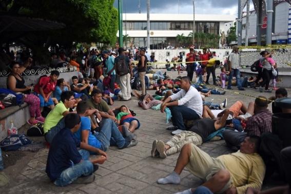 trajes de payaso perro hondurenos buscan sueno americano 2