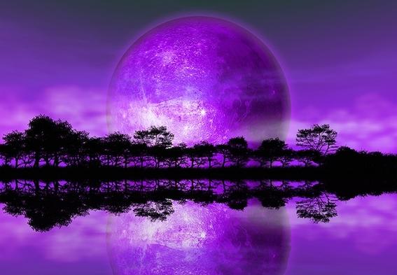 vida extraterrestre y primitiva podria haber sido purpura 2