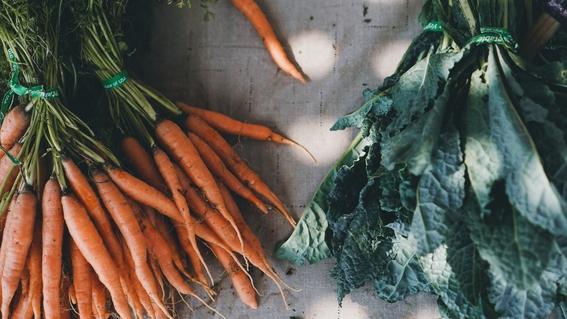 dieta organica que es y como ayuda a combatir el cancer 1