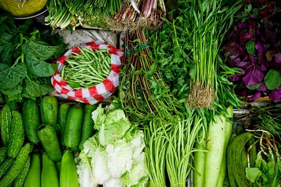 dieta organica que es y como ayuda a combatir el cancer 3