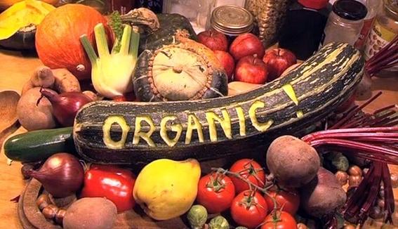 comer alimentos organicos reduce los riesgos de cancer 1