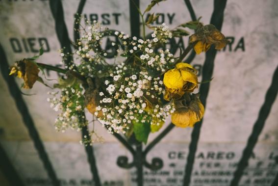 como superar la muerte de un ser querido 1