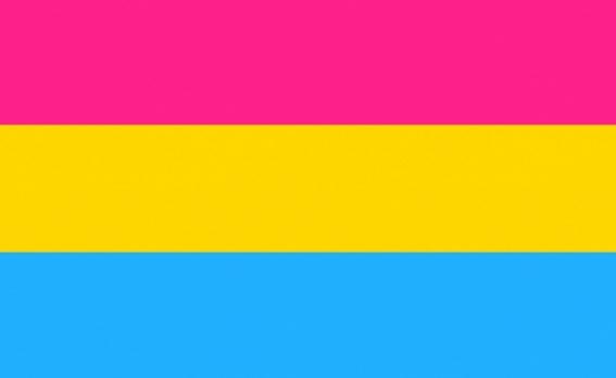 que es pansexual y cual es su bandera 1