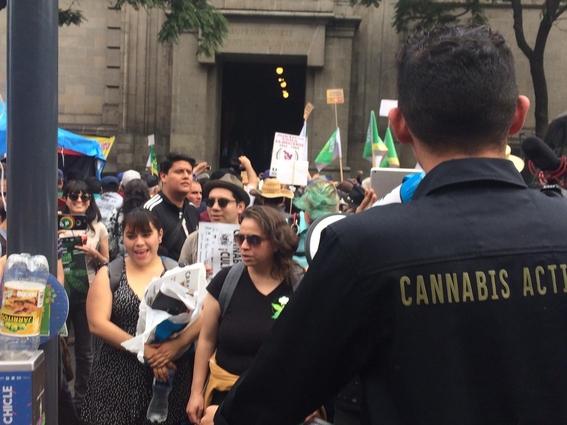 scjn emite quinto fallo sobre inconstitucionalidad del cannabis 2