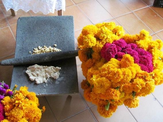 ninin 42 dias dia de muertos tradicion mexicana totonaca 4