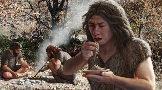 alimentos dieta humana cambio la evolucion hombres 5