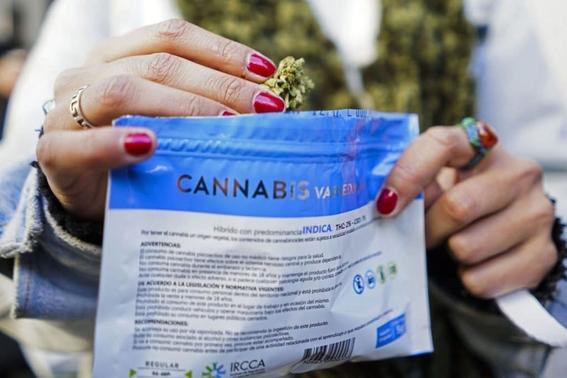 legalizacion mariguana 4