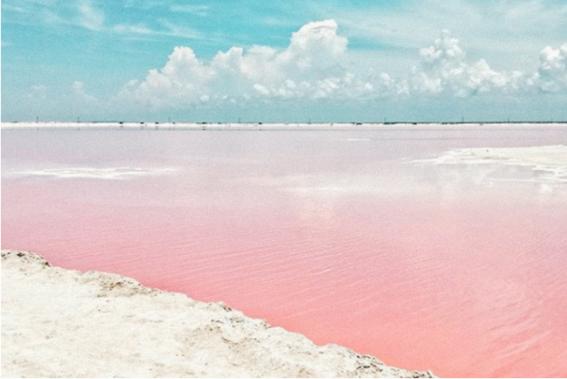 las coloradas la playa rosa que esta en mexico 2