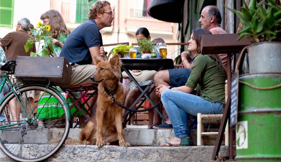 restaurantes pet friendly en la condesa 2