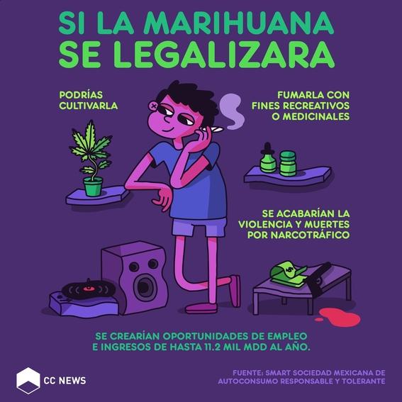 sentencia de la scjn sobre la marihuana 3