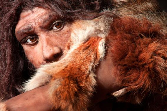 virus del papiloma humano nos fue transmitido por neandertales 2