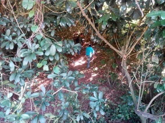 colectivo solecito inicia busqueda en fosas clandestinas 2