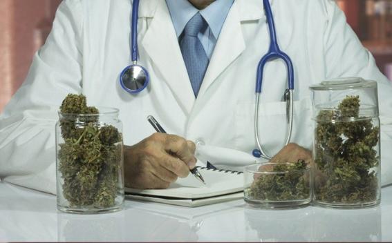 legalizacion de la marihuana en mexico 6