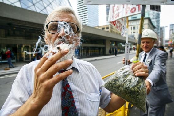 legalizacion de la marihuana en mexico 7
