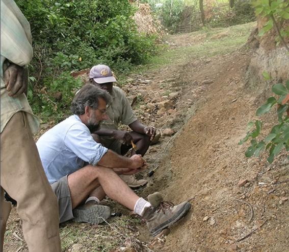 descubren al simio mas pequeno en la tierra simiolus minutus 2