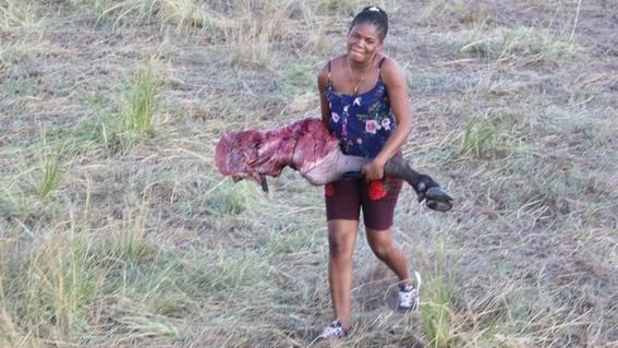 encuentran bufalos ahogados en rio chobe entre bostsuana y namibia 3