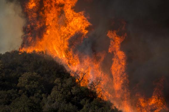 nueve muertes por incendios en california 6