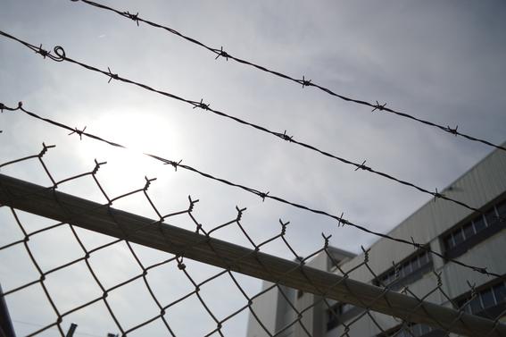 los derechos humanos de los delincuentes 1