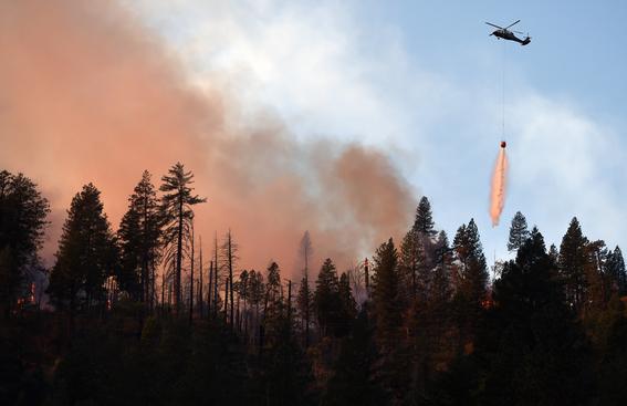 incendio forestal 4