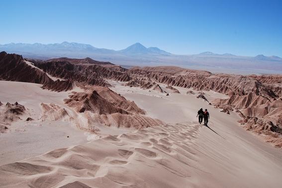 desierto atacama lluvias desierto atacama chile vida desierto atacama extincion extincion masiva extincion desierto atacama microbios mib 1