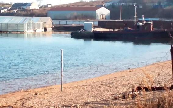 encuentran ballenas encerradas en jaulas en rusia 1