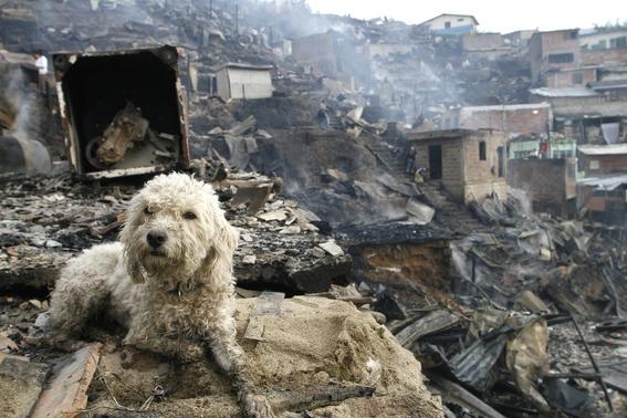 humanidad enfrenta un riesgo de catastrofes climaticas simultaneas 3