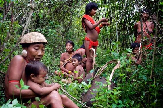 indigenas amazonas proponen un santuario ambiental del tamano de mexico 2