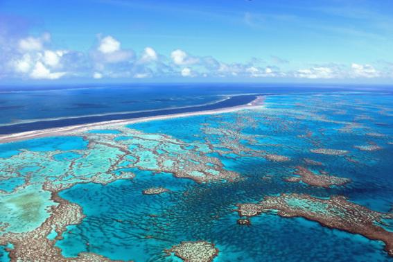 cambio climatico causa aumento de temperatura de los oceanos 2