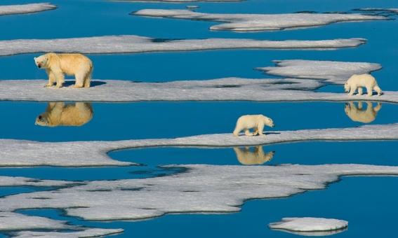 cambio climatico causa aumento de temperatura de los oceanos 3