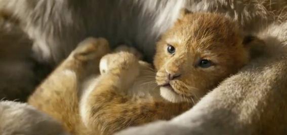 el rey leon trailer 1