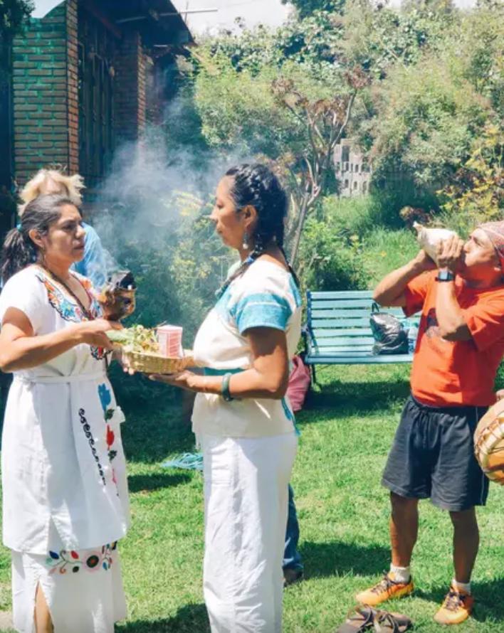 Experiencias Airbnb para estar en contacto con la naturaleza