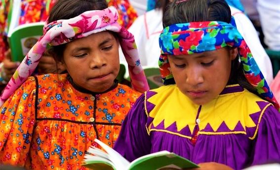 estudiantes crean hombre conejo el comic que fomenta las lenguas indigenas 2
