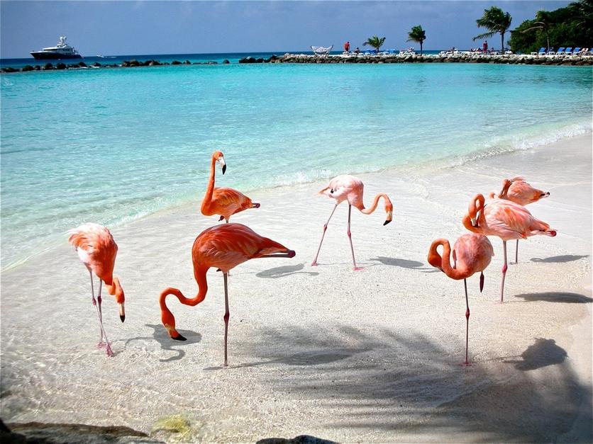 8 playas vírgenes en México por las que vale la pena tomar unas vacaciones 3