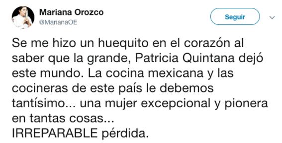 fallece la chef mexicana patricia quintanilla 2