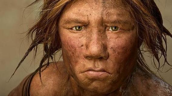 humanos y neandertales tuvieron varios encuentros sexuales segun estudio 2