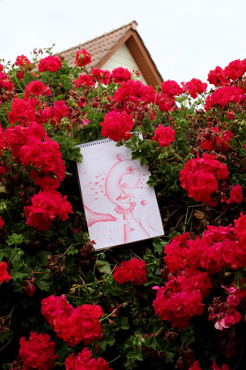 Cuánta soledad hay en una rosa con espinas 1