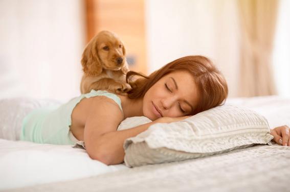 mujeres duermen mejor con perros que con hombres 3
