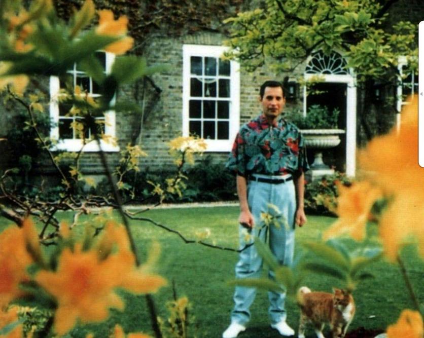 50 fotografías de la evolución de Freddie Mercury 50
